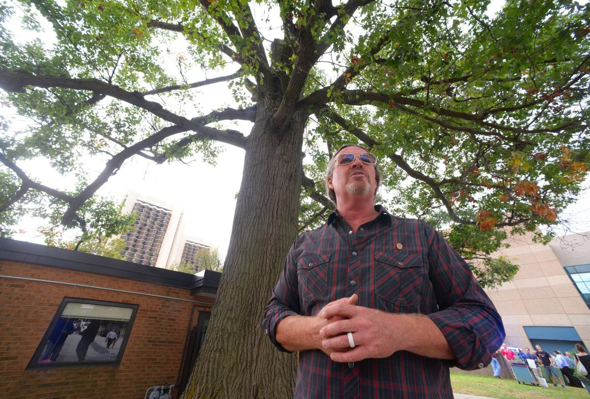 illinois state university bids farewell to king of the forest