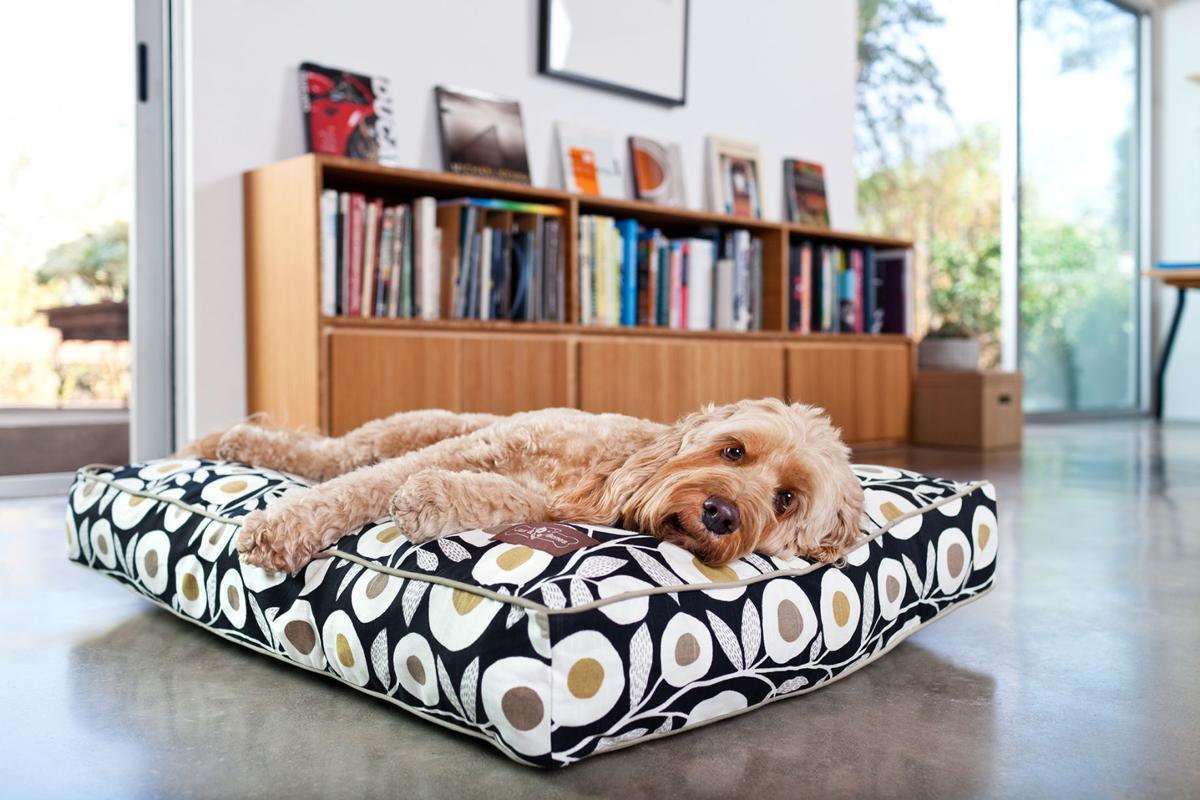Jameson Dog Beds For The Discerning Designer