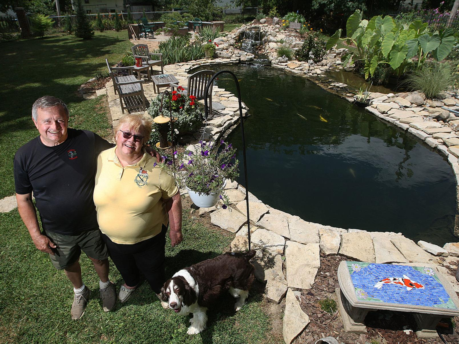 Decatur Couple S Elaborate Koi Pond Featured In Region Wide Tour Local Herald Review Com