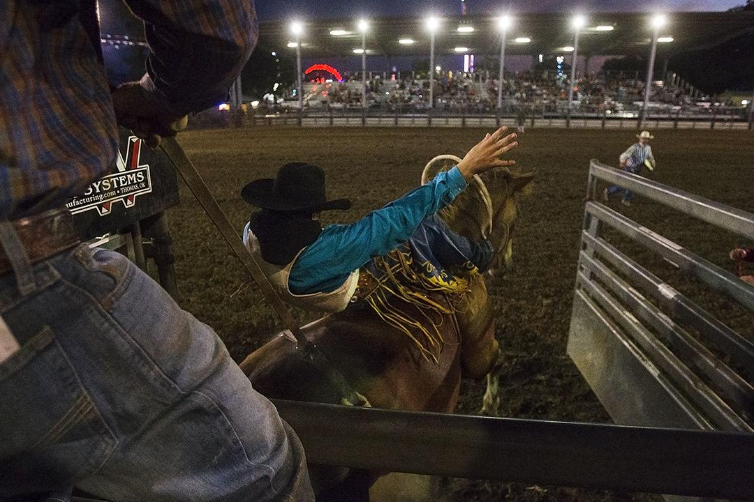 fair rodeo