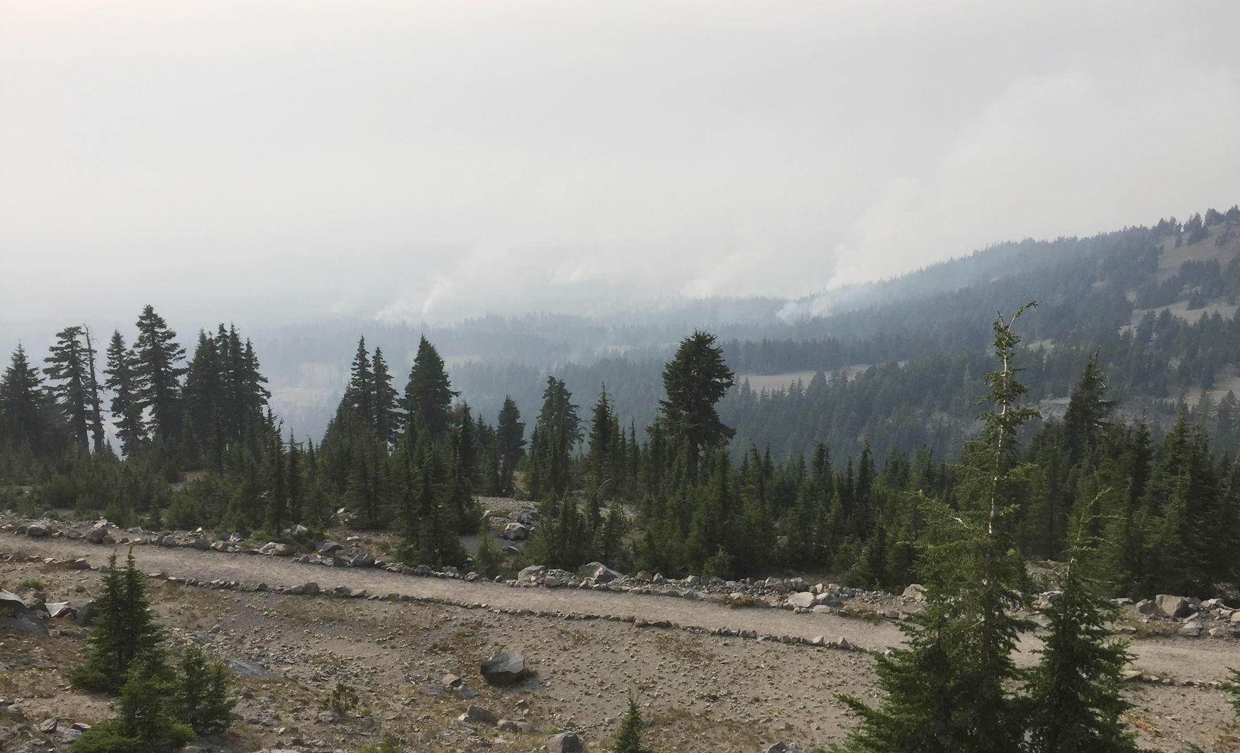BC firefighter fined for breaking campfire ban