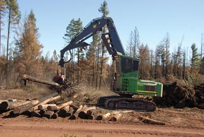 Timber company expands to Southern Oregon | Email Blast