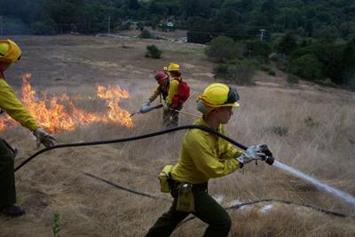 Underbrush In Owen Park Is So Dense Its >> Using Fire To Solve Wildfire Problems Local News Heraldandnews Com