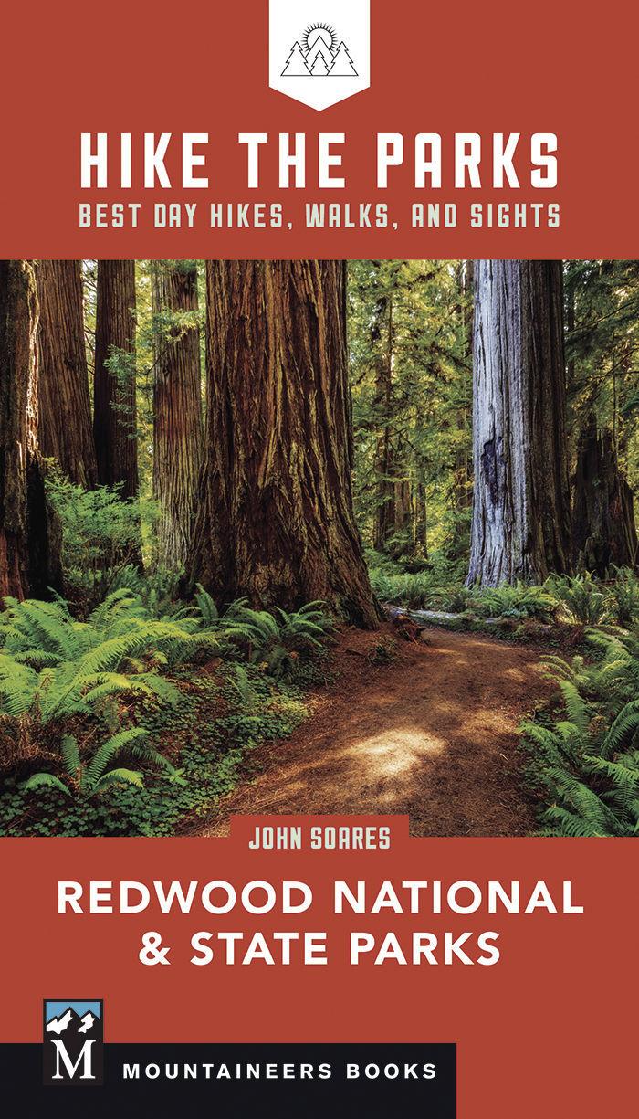 han-20190802-redwoods 2.jpg