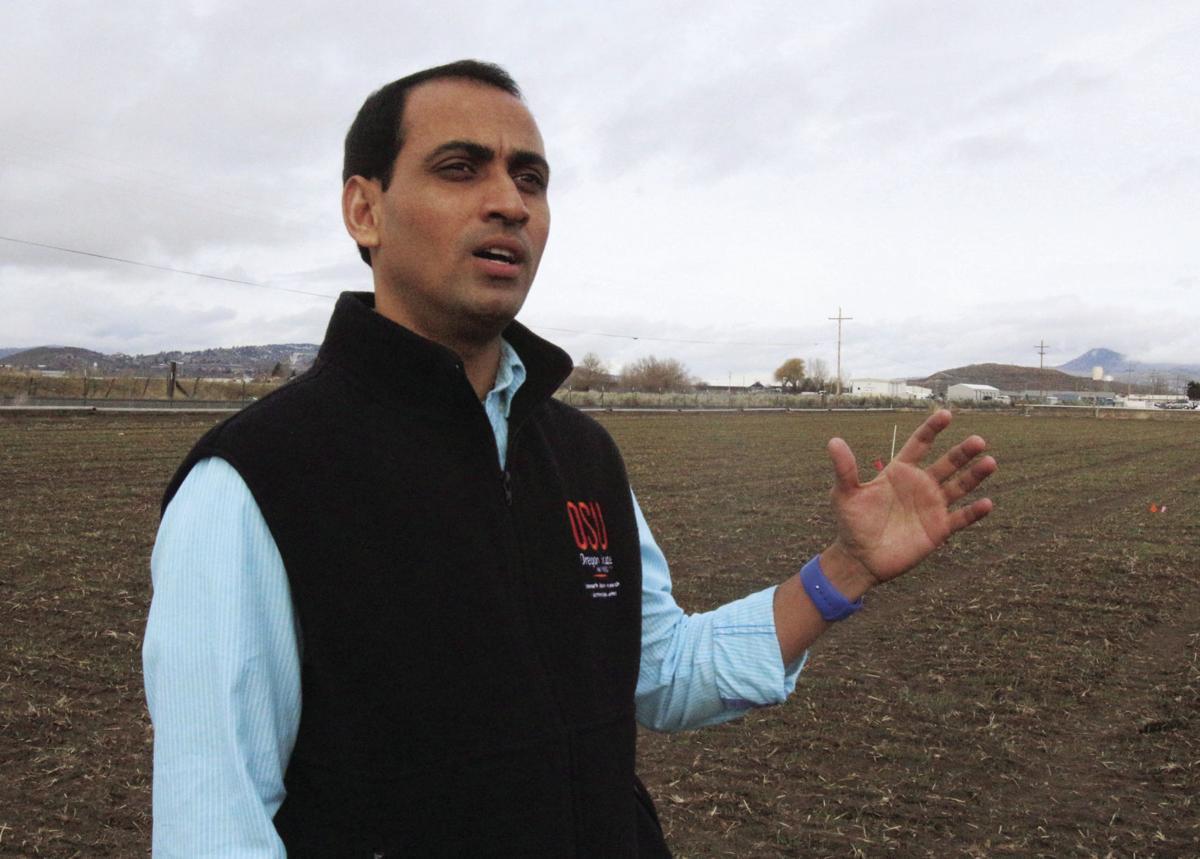 KBREC welcomes new agronomist