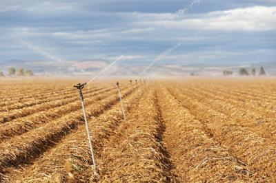 Klamath irrigation