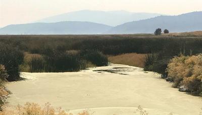 Water to Lower Klamath Refuge