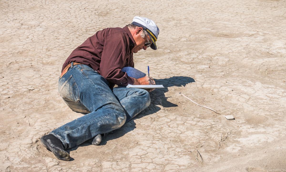 Mammoth steps found at Fossil Lake | Local News | heraldandnews.com