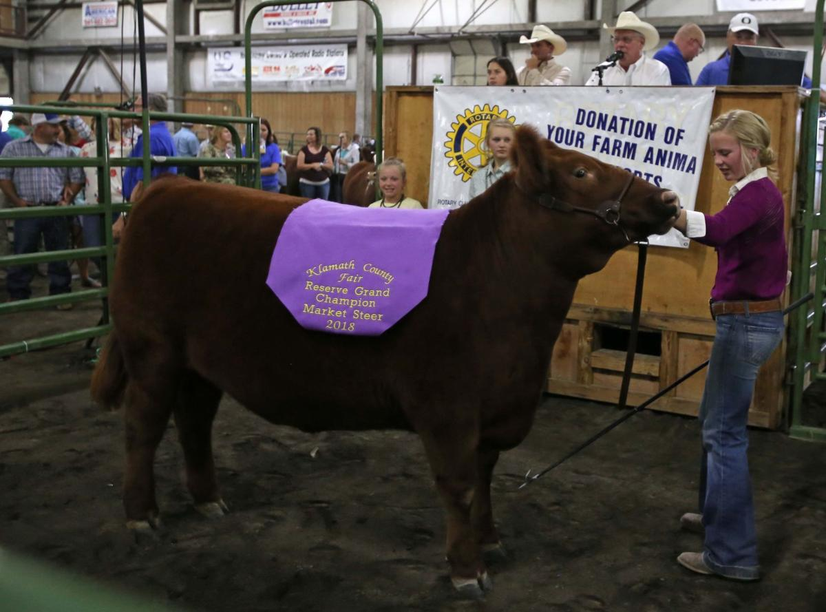 New sales record set for 4-H/FFA Rotary auction | News