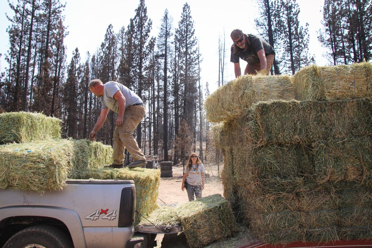 Hay in Bly