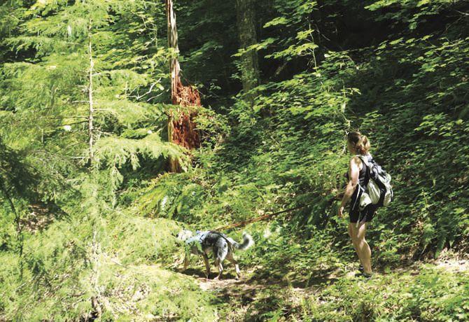 Leade hike photo