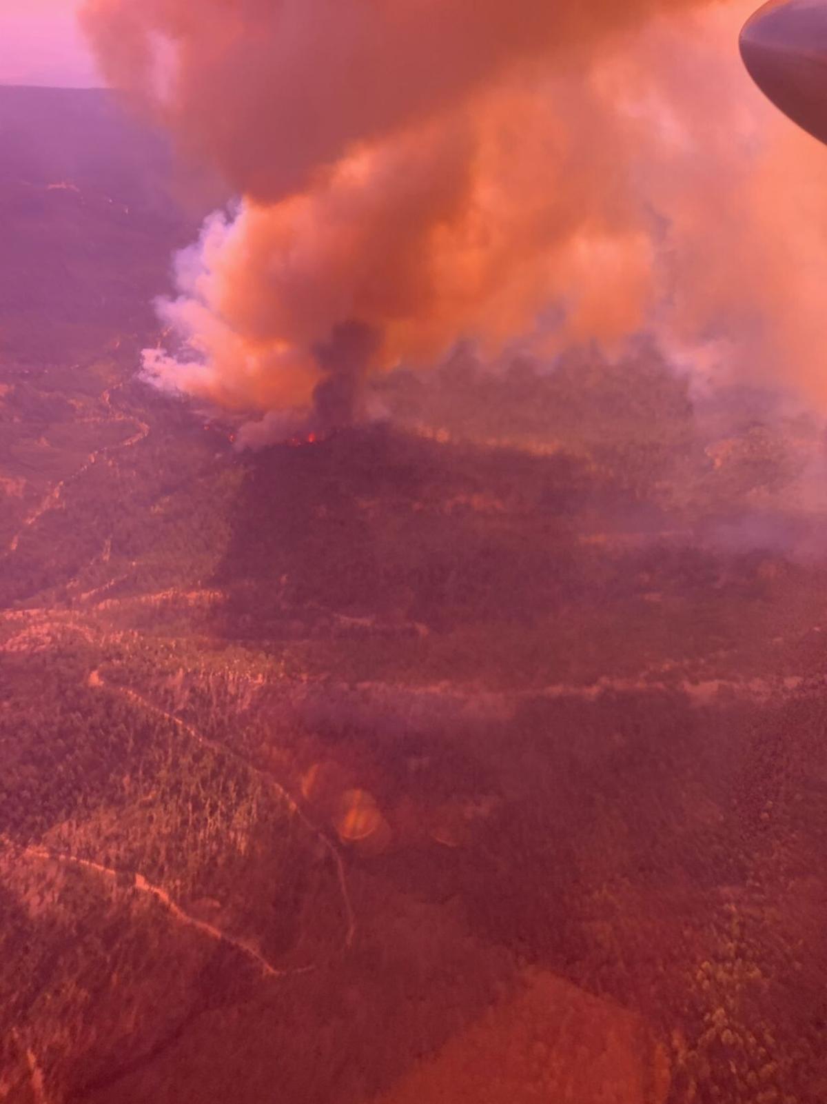 Cougar Peak Fire aerial view