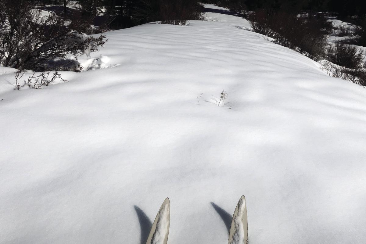 han-20190315-trail ski 3.jpg
