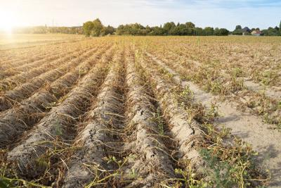 5-27 drought assistance