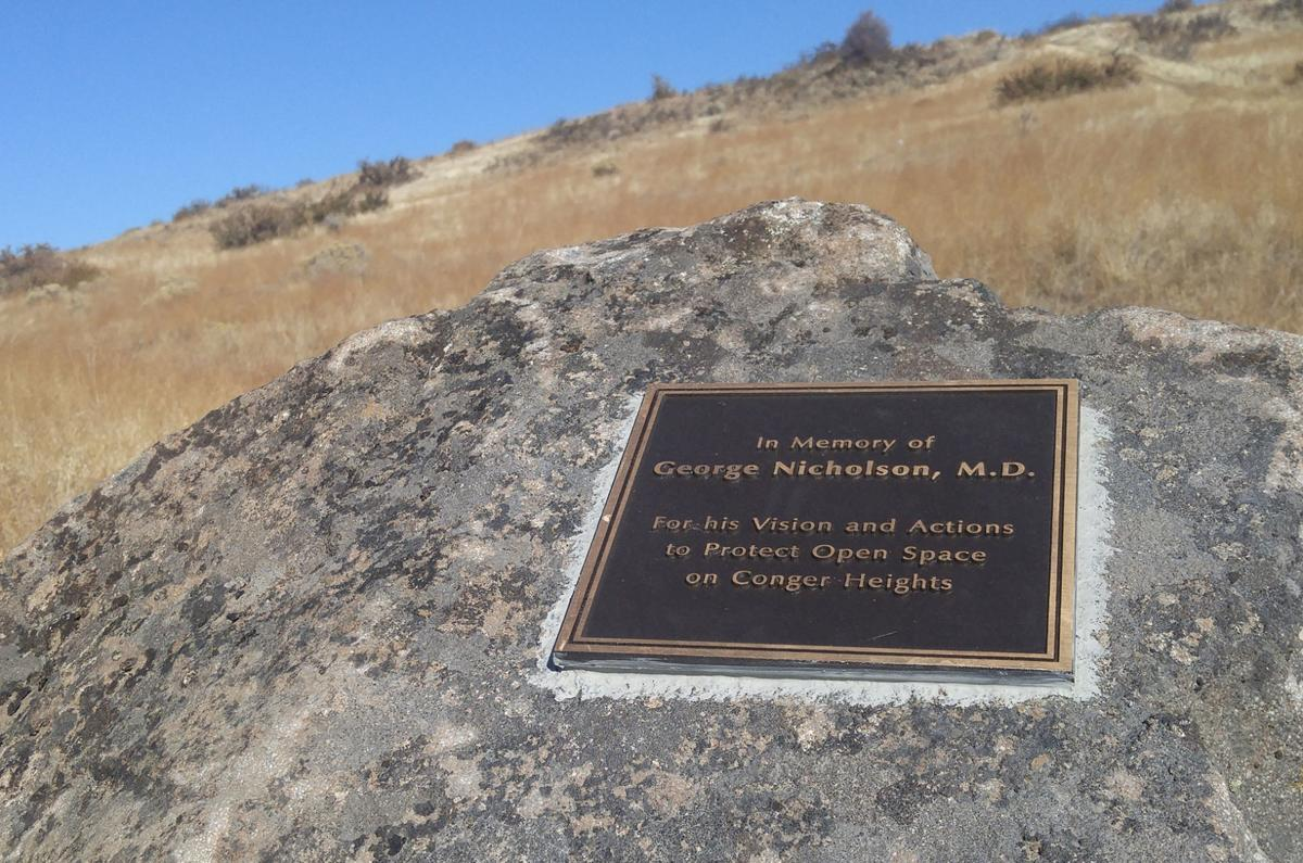 Conger Heights Nicholson plaque