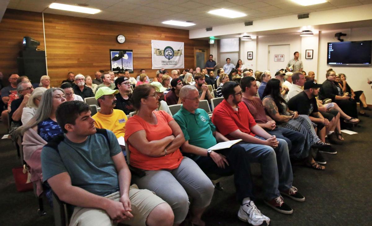 City council cannabis comments
