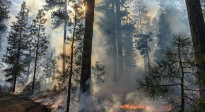 Lightning sparks several small fires