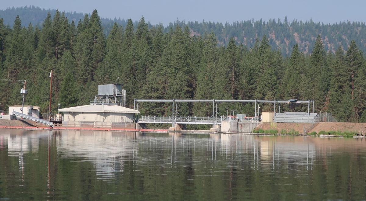 Topsy Reservoir kayak