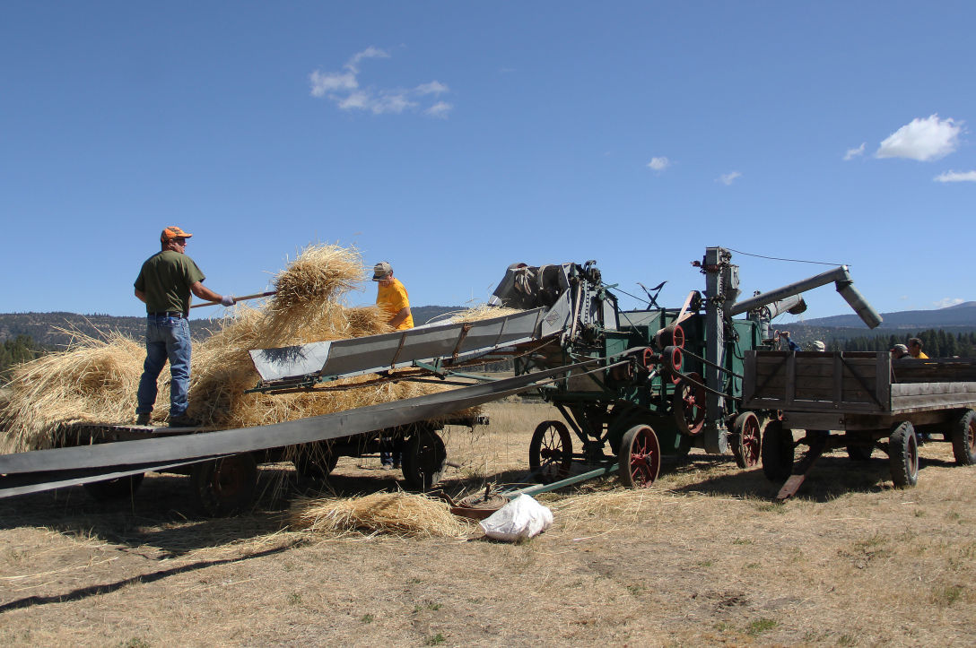 Old Fashioned Threshing Klamath Heraldandnews Com