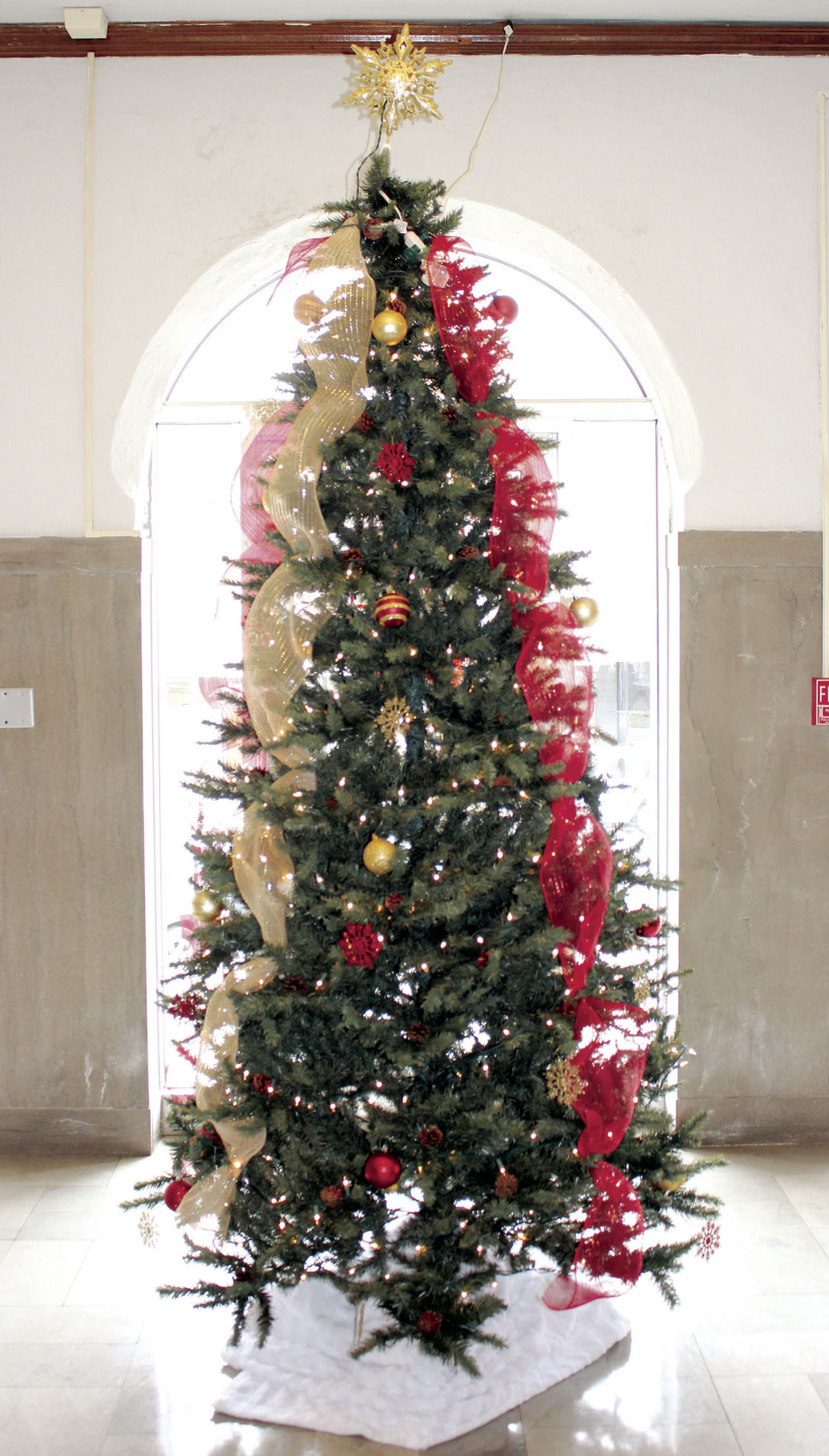Christmas Tree farms in Hunt County to open for season | Community ...