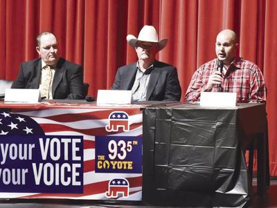Precinct 3 county constable candidates