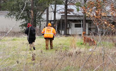 Cadaver Dogs Help Sheriff S Office Renew Search News