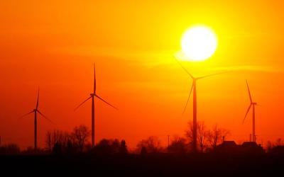 Wildcat Wind Farm