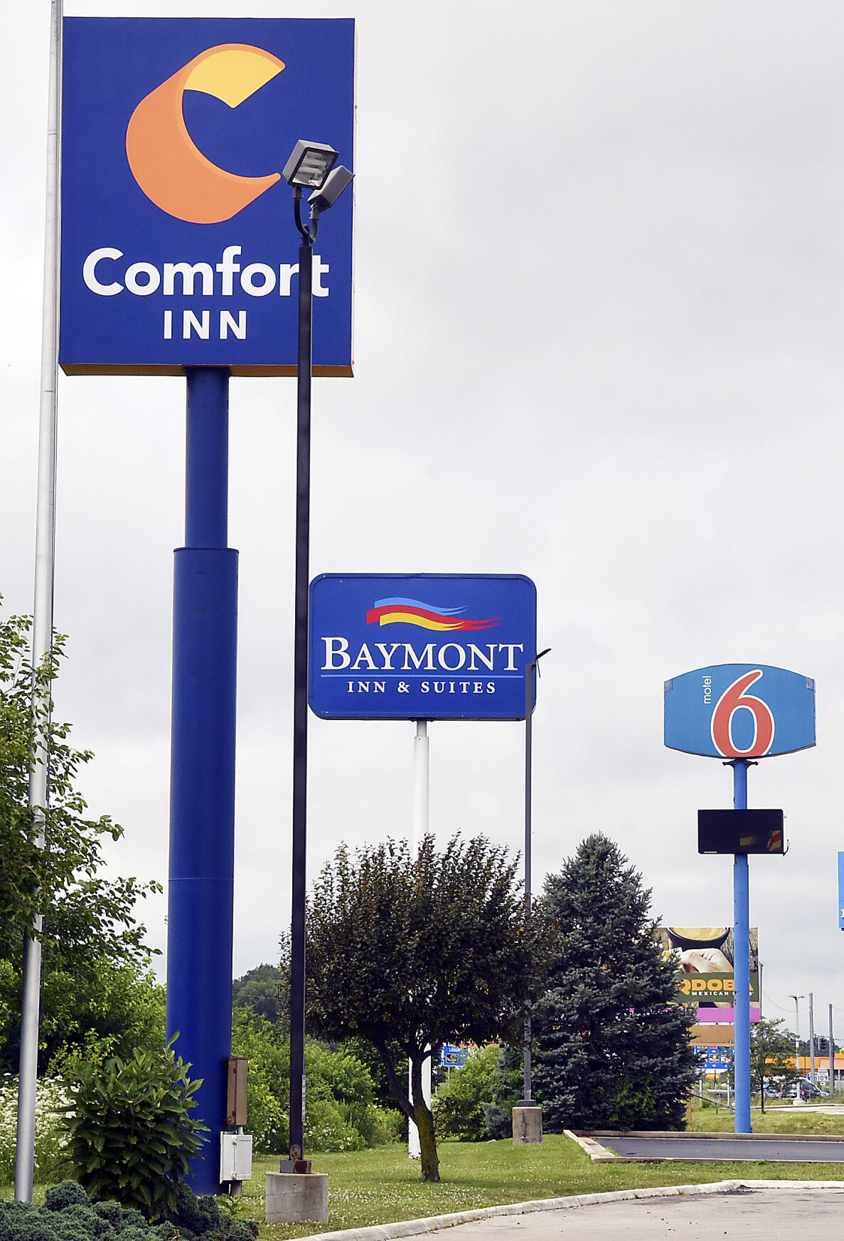 Occupancy rates down, but local hotels weathering pandemic storm