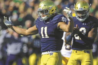 Irish's Gilman excited to play former team | Sports ...