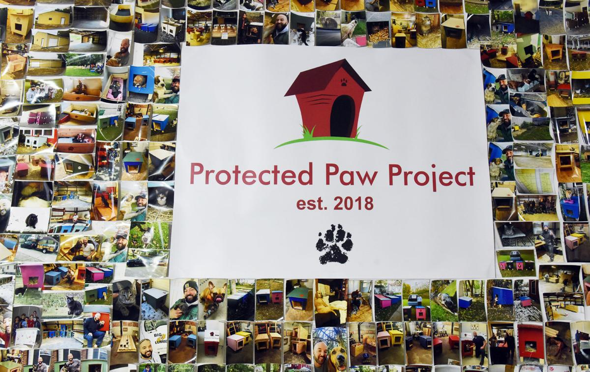 200205-protected-paw-project2-photo.jpg