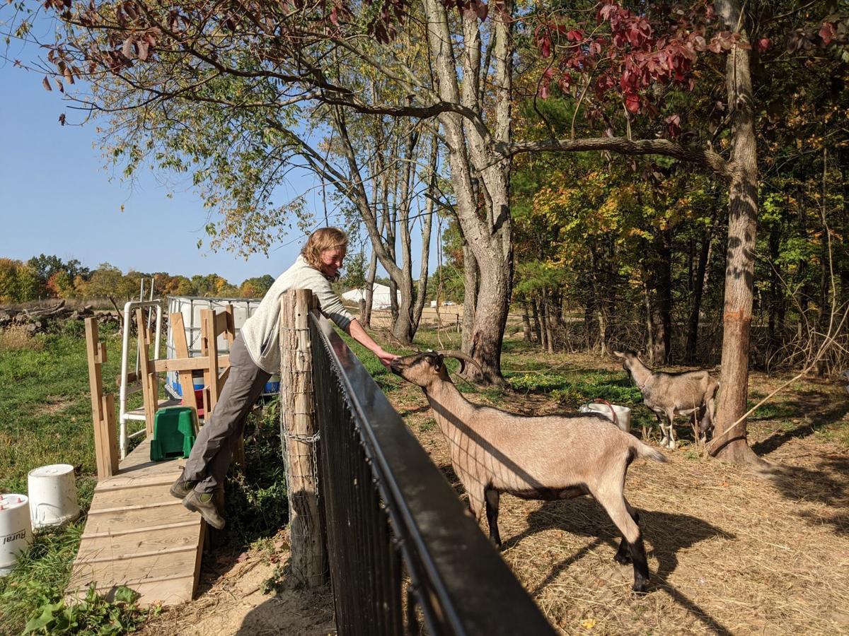 Susan Flynn feeding a goat