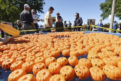 St. Joseph Fall Fest this weekend