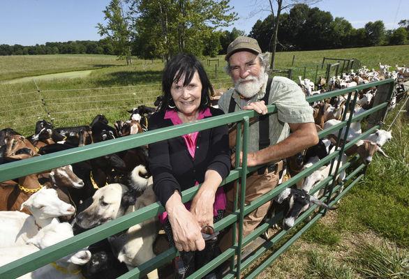 Goat dairy farmers win Farmer of Year award in VB County