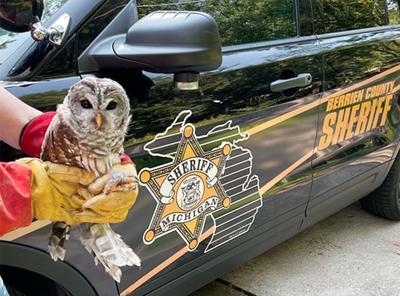 210831-HP-owl-photo.jpg