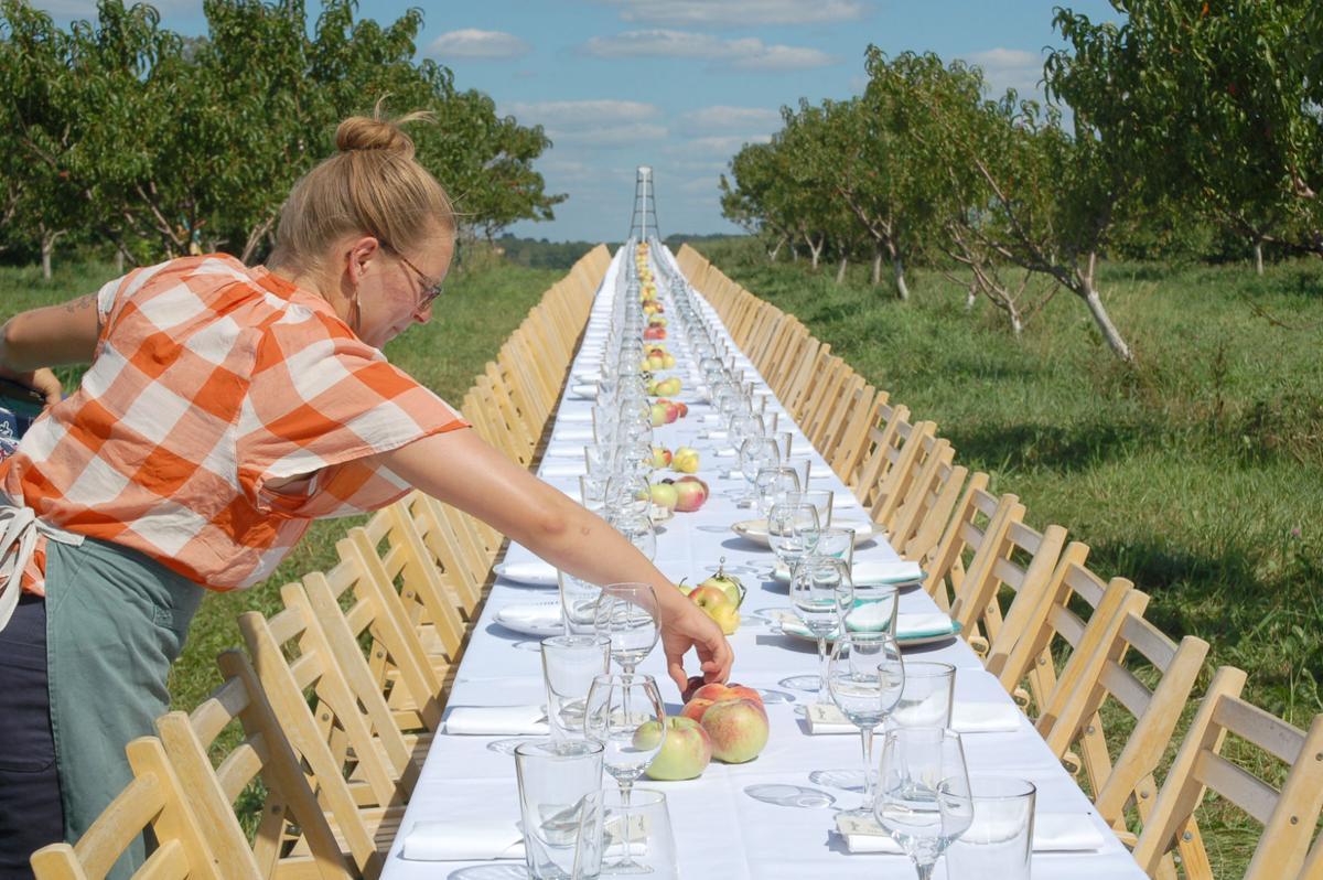 Outstanding in field table setting