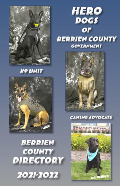Hero dogs photo