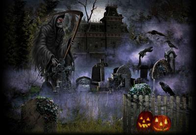 Niles Scream Park.jpg
