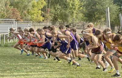 BCS championship race