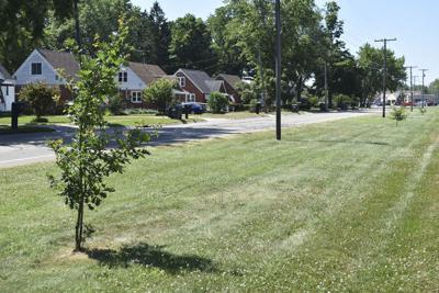 'No Parking' on grass disputed in Stevensville