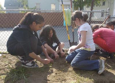 Learn how to do urban gardening