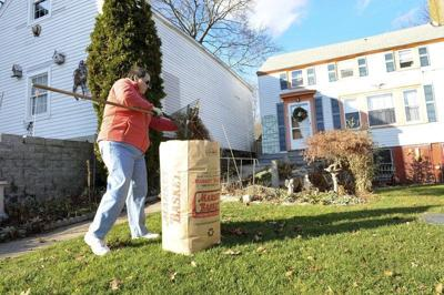 City provides curbside pickup of leaves for residents