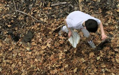 Volunteers sought for citywide cleanup