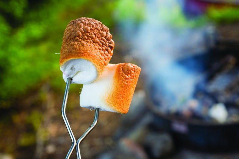 Camping Marshmallows