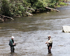 Linville River Fishing High Country Nc Play