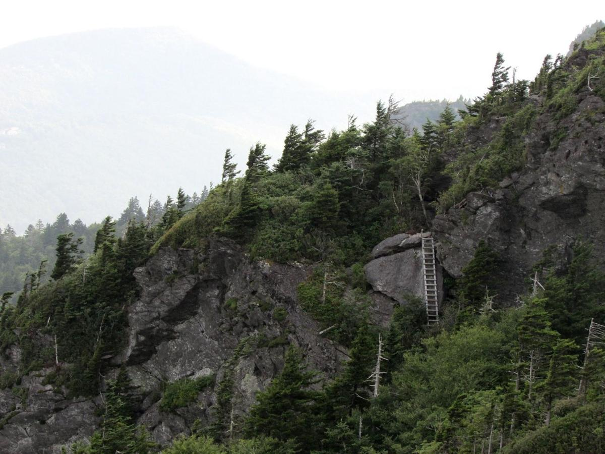 Grandfather Mountain from atop