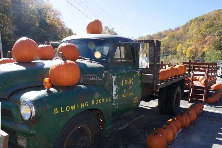 Pumpkin Picking Gremlin Gourds Warty Warts And Gray