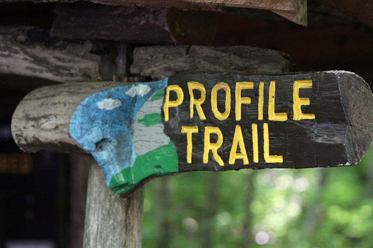 Hiking - Profile Trailhead