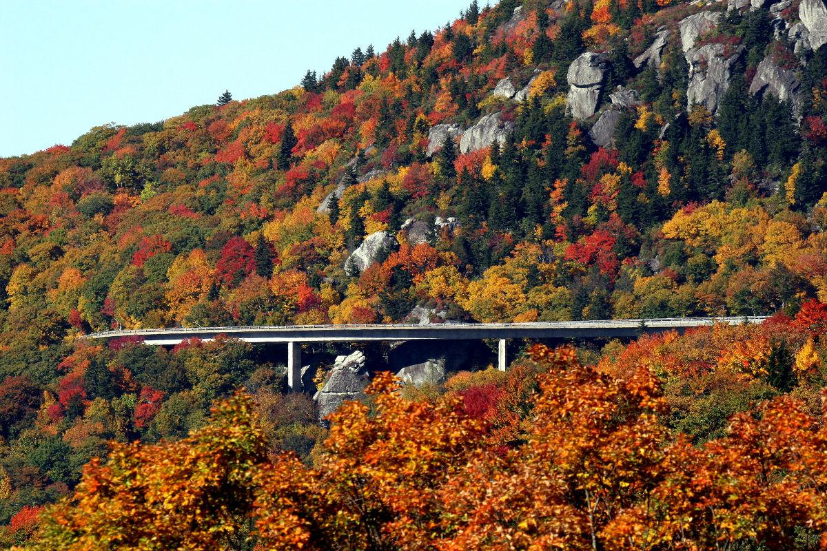 Grandfather Mountain jaunts showcase fall foliage | Seasonal ...