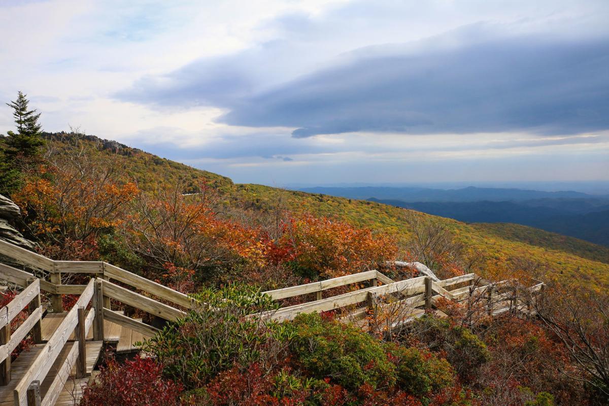 Hiking: Just a splash of color | Hcnc | highcountrync.com