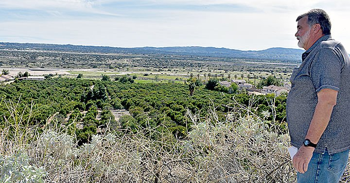 Commissioners back houses  for 127-year-old orange grove